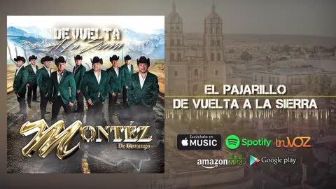 Montez De Durango - El Pajarillo (Nuevo Álbum) - Montez De Durango