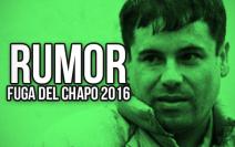 RUMOR: El Chapo Escapa! - Los GIFs ..