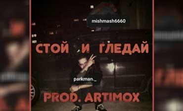 Parkman__ArtimoX_feat._MishMash_-_stoi_i_gledai