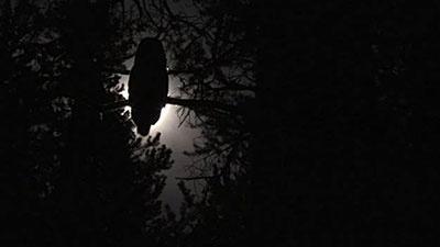 OWL G -  Midnight Jazz/ 1967